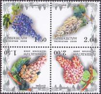 Tajikistan - Grades Of Grapes, Set Of 4 Stamps, MINT, 2008 - Obst & Früchte