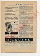 Publicité 1935 Galactogil Lait Allaitement Maternel Maman Bébé Progil Ris Orangis Pérotyl Perrotin Bléré 37 229CH25 - Zonder Classificatie