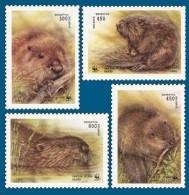 Belarus 1995 Mih. 96/99 Fauna. WWF. European Beaver MNH ** - Bielorrusia