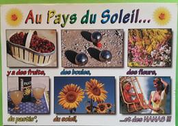 Au Pays Du Soleil... Y A Des Fruits,des Boules  PÉTANQUE, Des Fleurs,  Du Pastis,  Du Soleil  Et Des NANAS Seins Nus, TB - Bocce