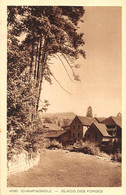 Champagnole Braun 4530 Glacis Des Forges - Champagnole