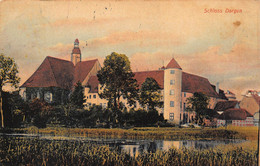 GERMANY~SCHLOSS DARGUN~TINTED PHOTO POSTCARD 50700 - Other