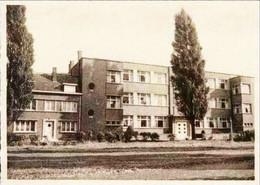 WILRIJK - Klooster En School Van De Goddelijke Voorzienigheid - Arendonk