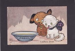 Cat Card -  Ladies First !!.  HGC Marsh Lambert.   CW Faulkner.   1913. - Cats