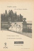 # LAVANDA COLDINAVA NIGGI IMPERIA 1950s Advert Pubblicità Publicitè Reklame Perfume Parfum Profumo Surf - Non Classificati
