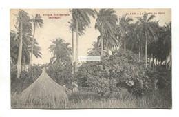 Dakar, Senegal - Le Jardin De Hann - Old Postcard - Senegal