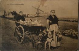 Laitieres Flamandes (Attelage Chien - Hondenkar) Molen - Moulin 19?? Kaart Vlekkig - Sin Clasificación