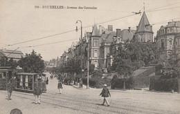 Bruxelles , Avenue Des Germains ( Beau  Tram , Tramway )   ,n° 290 - Transporte Público