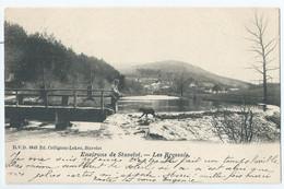 Stavelot - Environs De Stavelot - Les Bressais - D.V.D. 8642 Ed. Collignon-Lekeu, Stavelot - 1903 - Stavelot