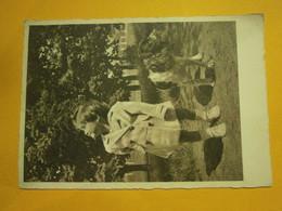 Enfant Avec Son Chien écrite Environ 1940,très Bel état,envoi En Lettre économique 0,97€,possibilité De Regrouper Vos Ac - Otros