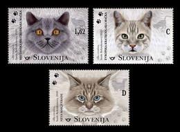Slovenia 2020 Mih. 1436/38 Fauna. Domestic Cats MNH ** - Slovenië