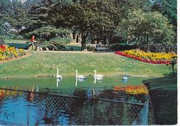 NANTES (44.Loire-Atlantique) Jardin Des Plantes Près Du Lac Aux Cygnes - Nantes