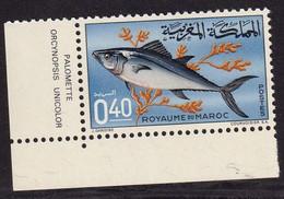 MAROC - Faune, Poissons - Y&T N° 514-516 - MNH - 1967 - Marokko (1956-...)