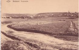 Noiseux - Panorama- Edit. Taziaux-Charlier/Jos - Marche-en-Famenne
