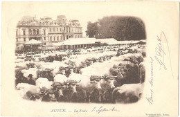 Dépt 71 - AUTUN - La Foire - (boeufs) - Vergniaud édit., Autun - Autun
