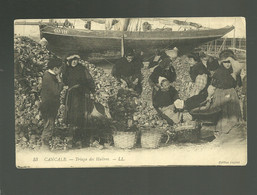 35 Cancale Triage Des Huîtres édit. LL N° 53 Cliché Legros Bisquine Can 121 Ostréiculture  Pêche Des Huîtres - Cancale