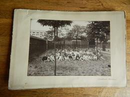 CHARLEROI ET ENVIRONS ??:TRES BELLE PHOTO 12X18 SUR CARTON D'UNE ECOLE ENFANTS FAIT PAR QUOIDBACH CHARLEROI - Charleroi