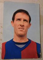 Fogli Romano  # Bologna  # Calcio #  Cartolina # Persicostampa - Voetbal