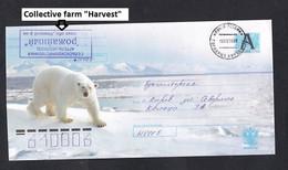 RUSSIA .Stamped Stationery . Polar Bear. - Bären