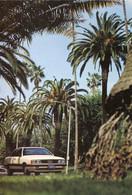 Audi 5000 S C3,Werbekarte Audi Los Angeles 1984, Ungelaufen - Passenger Cars