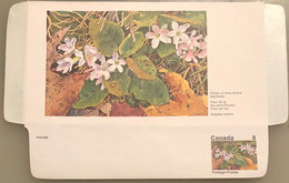 Canada Stationery Aerogramme Flower Of Nova Scotia Mayflower- Unused - Otros