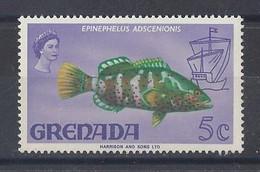 "GRENADA....QUEEN ELIZABETH II...(1952-NOW..)..""..1968..""...EPINEPHELUS ADSCENIONIS..FISH.....5c.....SG309.........MNH... - Vissen"
