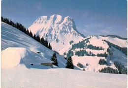 Suisse - Moleson  Et Chalet Des Reybes - FR Fribourg