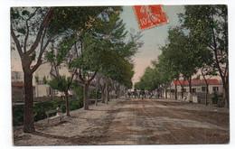ALGÉRIE - BATNA - L'Avenue De Bislera - Animée (C136) - Batna