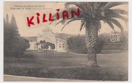 Palais De Glace De Nice Vue Sur Le Parc (rare) - Otros