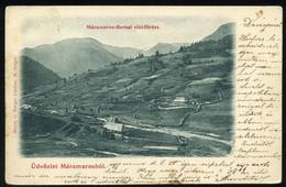 MÁRAMAROS 1899. Vizifűrész, Régi Képeslap - Hongarije