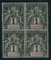 Guayana (Francesa) Nº 30 (bloque-4) Nuevo** - Ongebruikt