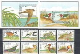 Sierra Leone 1990 Birds Set+2s/s MNH - Otros