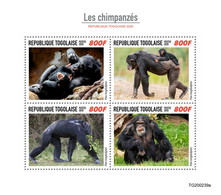 Togo  2020  Fauna   Chimpanzees  S202009 - Togo (1960-...)