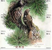 PUZZLE Oiseau Bird 6  Télécartes Phonecard Chine (W 334) - Otros