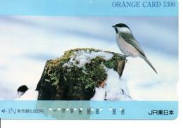 Oiseau Bird Oiseaux  Animal  Carte Prépayée  Card Japon  Japan (W 336) - Otros