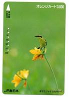 Oiseau Bird Oiseaux  Animal  Carte Prépayée  Card Japon  Japan (W 337) - Otros