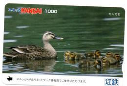 Canard Oiseau Bird Oiseaux  Animal  Carte Prépayée  Card Japon  Japan (W 338) - Otros