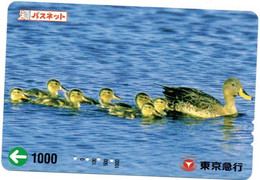Canard Oiseau Bird Oiseaux  Animal  Carte Prépayée  Card Japon  Japan (W 339) - Otros