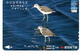 Becasseau Oiseau Bird Oiseaux  Animal  Carte Prépayée  Card Japon  Japan (W 340) - Otros