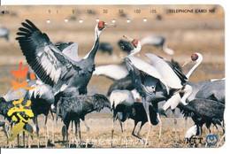 Oiseau Bird Oiseaux  Animal  Télécarte Phonecard Japon  Japan (W 341) - Otros