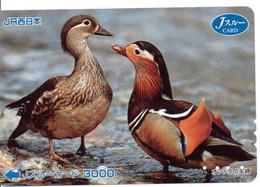 Oiseau Bird Oiseaux  Animal  Carte Prépayée  Card Japon  Japan (W 342) - Otros