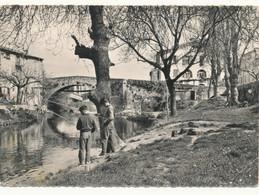 83 // TRANS    Les Rives De La Nartuby    CPSM EDIT MICHEL  * - Autres Communes