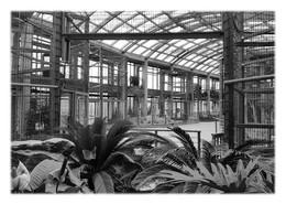 SAINT-MARTIN-LA-PLAINE - Parc Zoologique. Serre Des Primates - Otros Municipios