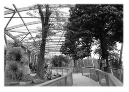 SAINT-MARTIN-LA-PLAINE - Parc Zoologique. Volière - Otros Municipios