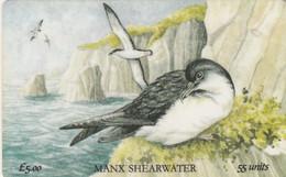 Isle Of Man, MAN 073, Manx Shearwater, Bird, 2 Scans. - Isla De Man
