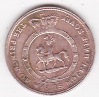 Jeton Token PRINCE OF WALES Model Half Sovereign Queen Victoria 1849 - Royal/Of Nobility