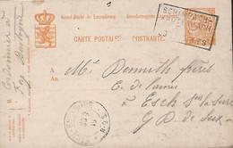 Luxembourg - Luxemburg - Carte Postale - Postkarte  1919 - Cachet  Schimpach-Kautenbach  -  2 Scans - Stamped Stationery
