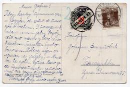 1919. SERBIA,VRSAC,HUNGARY,HUNGARIAN STAMP,ILLUSTRATED POSTCARD SENT TO BELA CRKVA,USED - Bosnia And Herzegovina