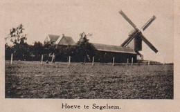 De Boerin 1931 (Boerinnenbond) - Zegelsem (Brakel) & Zondereigen (Baarle-Hertog) Hoeve & Windmolen - Gezin 17 Kinderen - Historische Dokumente
