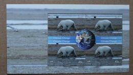 Y2 2008 : Nations Unies (N-Y) : Changement De Climat - Ours Polaire Et Globe Terrestre - Ongebruikt